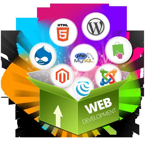 Best/Top Website/Web Designer Hyderabad | Graphic Designing Services